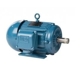 Motor Trifasico 1Hp - 1500Rpm Weg